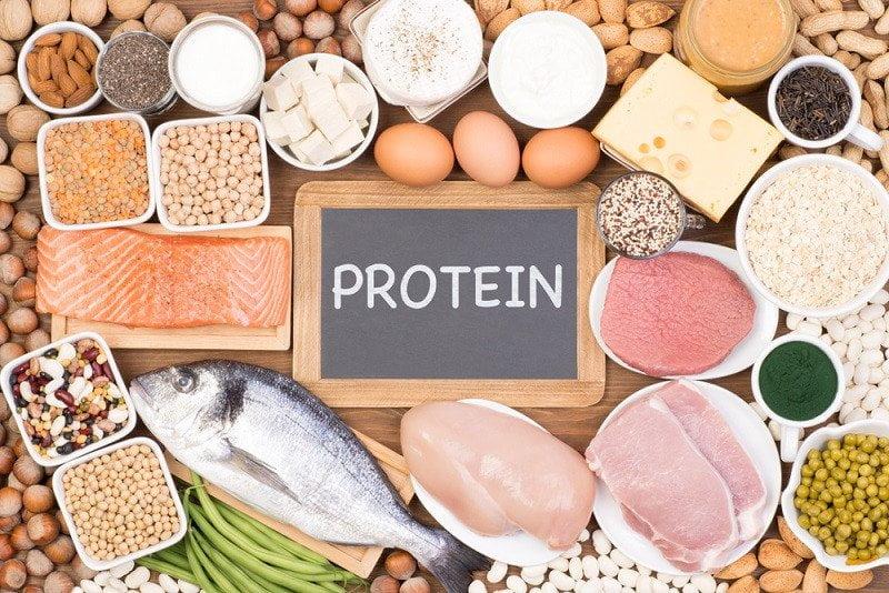 thực phẩm nhiều protein